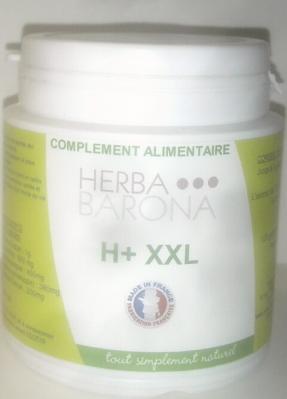H+XXL